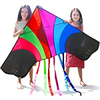 Tomi Kite – Huge Rainbow Kite That is Ideal for Kids and Adults – Easy to Launch in Stiff Wind or Soft Breeze – 60 Inches Wide – 100 Meter String – 6 Tails – Built to Last - Great for Family Fun and children