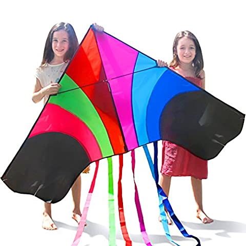 Tomi Kite – Huge Rainbow Kite That is Ideal for