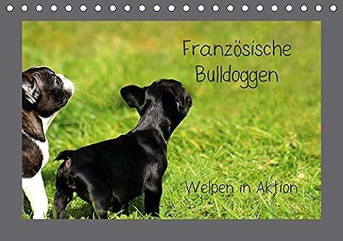 Französische Bulldoggen (Tischkalender 2018 DIN A5 quer): Welpen in Aktion (Monatskalender, 14 Seiten ) (CALVENDO Tiere) [Kalender] [Apr 01, 2017] Hultsch, (Aktion Welpen)