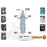 orsam–Kit Leuchtmittel Piaggio MP3500ab 2011–Night Breaker Unlimited