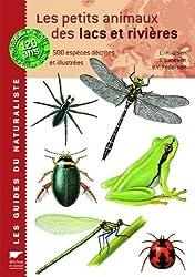 Les petits animaux des lacs et rivières : 500 espèces décrites et illustrées