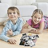 chora chora 63pcs Tarotkarten, Neue Und Interessante Tarotkarten Von Animal Spirit, Nicht wasserdichte Und Tragbare Karten, Zubehör Für Puzzlespiele Adaptable