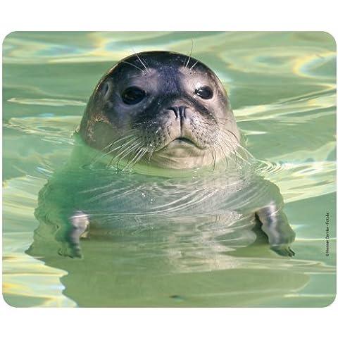 «foca in THE WATER