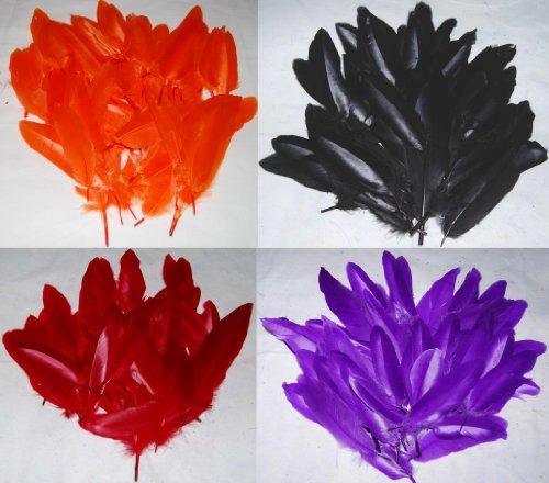 Federn / Kielfedern zum Basteln (ca. 288 Federn), Schwarz / Rot / Orange / Violett, jeweils eine - Halloween Brownie Crafts