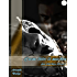 L'uomo dietro la maschera - Club Privè 185 Vol.1