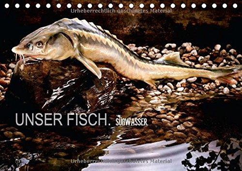 UNSER FISCH. SÜßWASSER. (Tischkalender 2016 DIN A5 quer): Detailgenaue Fischportraits, die ungesehen wirken und sind. (Monatskalender, 14 Seiten) (CALVENDO Tiere) -