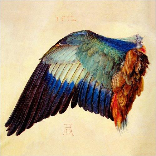 Poster 60 x 60 cm: Flügel Einer Blauracke von Albrecht Dürer - hochwertiger Kunstdruck, neues...