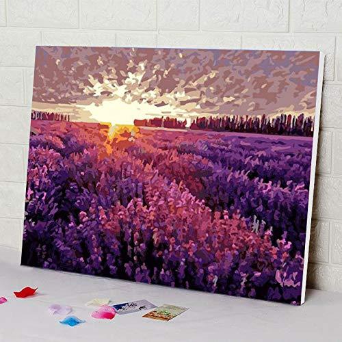 zlhcich Soggiorno paesaggi Figure Pittura a Olio GX388 Provenza Lavanda 40 * 50 cm con Co