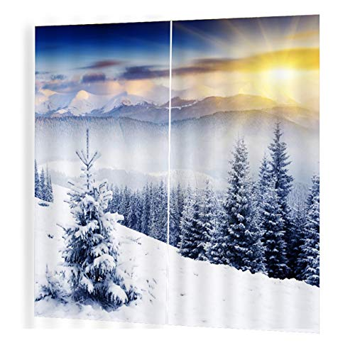 EdBerk74 150 * 166 cortinas para la sala de Estar Dormitorio Cortinas Sol de invierno Impreso Sombrilla de sol Estilo de jardín-Color