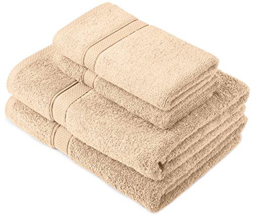 Pinzon Egyptian Cotton 725-Gram Towel Set, 2 Hand