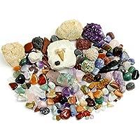 Dancing Bear Roca, minerales y fósiles Kit de recolección de Actividad