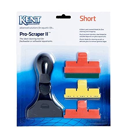 Pro Scraper Short