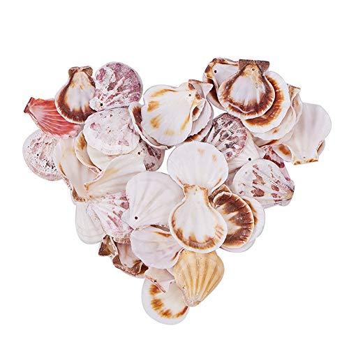 PandaHall 90 Stück Muschel Perlen Bastelnmuscheln Gefärbt