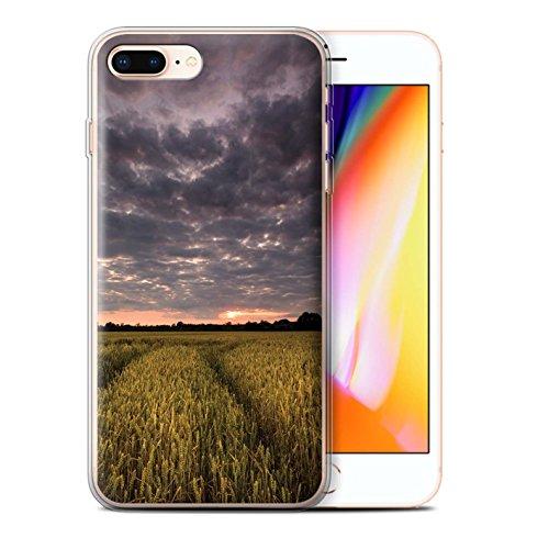 Stuff4 Gel TPU Hülle / Case für Apple iPhone 8 Plus / Löwenzahn Makro Muster / Englische Gärten Kollektion Sonnenuntergang