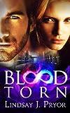 Blood Torn (Blackthorn Dark Series Book 3) by Lindsay J. Pryor
