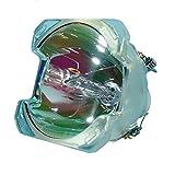 Lutema Economy für Dell 331-1310 Projektoren Lampe (Nur Birne)