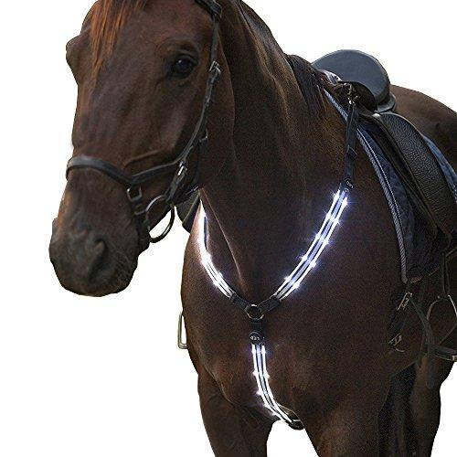 USB wiederaufladbare LED-blinkende Pferd Springreiten Halsbänder hoch sichtbar Beleuchten Reiten schutzausrüstungen