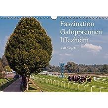Faszination Galopprennen Iffezheim (Wandkalender 2016 DIN A4 quer): Galoppsport in Iffezheim, Baden-Baden (Monatskalender, 14 Seiten) (CALVENDO Sport)
