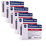 5 x Testosterol 250 x 30 Capsules Muscle Building Power Anabolic