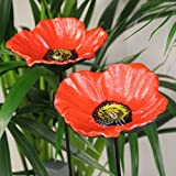 Parkland® Set of 2 Cast Iron Wild Bird Red Poppy Dish Feeders Bath Garden Ornament Decoration