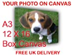 YOUR PHOTO/IMAGE ON CANVAS A3 = 12 x...