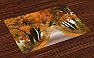 Rengirenk Ağaçlar 4'lü Servis Altlığı, Sonbaharda Orman Yolu, Dekoratif Tabak Altlığı Seti Yıkanabilir Sof