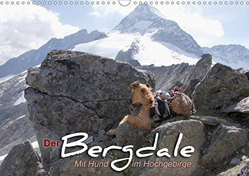 Der Bergdale - mit Hund im Hochgebirge (Wandkalender 2020 DIN A3 quer): Ein Airedale Terrier als Bergbegleithund (Monatskalender, 14 Seiten ) (CALVENDO Tiere)