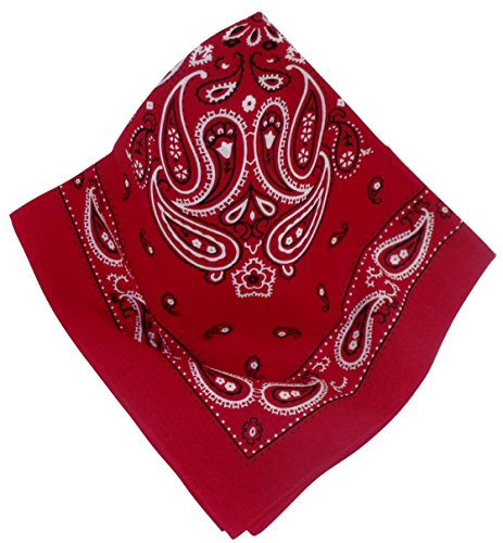 nickituch-in-typischem-bandana-design-klares-markantes-muster-in-rot
