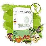 AYUNOVA Gelenk-Formel - 60 vegane Kapseln mit der einzigartigen Kombination aus bewährten Pflanzen, essentiellen Vitaminen und Mineralstoffen - Ihr täglicher Beitrag für geschützte Gelenke