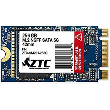 ZTC Armor 42mm M.2 NGFF 6G de Estado sólido SSD Disco (256GB ...