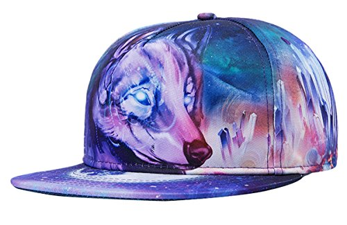 Aivtalk Unisex Snapback Hip Hop Rapper Cap 3D Baseball Kappe Flache Hüte Mütze Original Baseballcap, (Hat Rapper)
