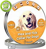 Flea Collars For Dogs Review and Comparison