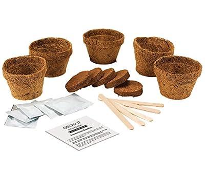 Gift Republic Grow It Geschenkset Chili-Pflanzset von Gift Republic bei Du und dein Garten
