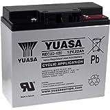 Yuasa Ersatzakku für Notstromversorgung (USV) 12V 22Ah (ersetzt auch 17Ah 18Ah 19Ah) zyklenfest, 12V, Lead-Acid