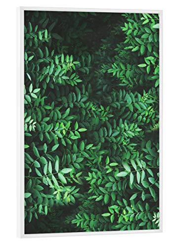 artboxONE Poster mit weißem Rahmen 30x20 cm Tropical Forest von Künstler Sail and Swan - Poster mit Kunststoffrahmen
