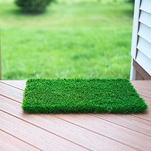 Artificial Grass Doormat (61 x 46 cm) - Welcome Mat For Entrance Way - Outdoors and Indoors