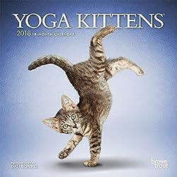 2018 Yoga Kittens Mini Wall Calendar