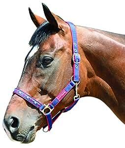 Harry Hall Galaxy Licol pour cheval Bleu Bleu roi Cob
