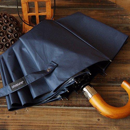 zjm-10-ossa-colore-solido-zero-light-ombrello-pieghevole-per-uomini-e-donne-automatico-ombrellone-na
