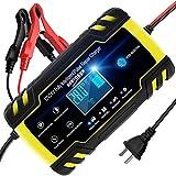 NWOUIIAY Chargeur de Batterie Intelligent Portable 8A 12V/4A 24V LCD Écran avec Protections Multiples Type de réparation pour Batterie de Voiture Moto...