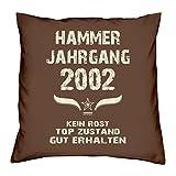 Hammer Jahrgang 2002 Sprüche Kissen 40x40 für die ganze Familie Geschenk zum 16 Geburtstag Geburtstagsgeschenk Sohn Tochter : braun