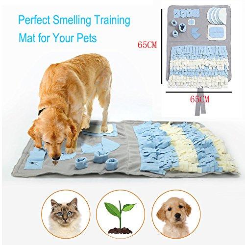 Schnüffelteppich für Hunde, Hund Riechen Trainieren,… | 00603977339595