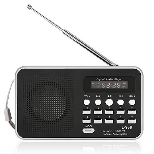 Richer-R Lecteur Audio Numérique Portable HiFi Musique Haut-Parleur Avec écran d'affichage numérique Support FM Radio TF Carte SD USB AUX w/Affichage