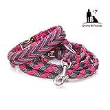 Hundehalsband, Paracord Halsband mit passender Leine, Hundeleine, Paracord Leine, Halsband + Leine, Hundehalsband + Leine, Hundehalsband + Leine Paracord, geflochten