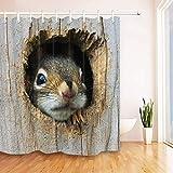 CaknQizawyy Trou d'arbre Gris 1 écureuil Animal Mignon Barbe Noire Rideau de Douche...
