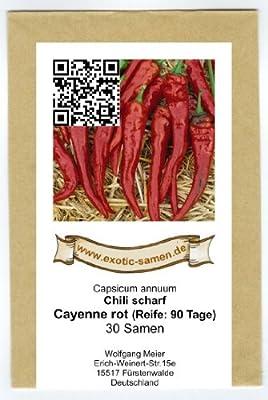 Wohl eine der berühmtesten Chili-Sorten - Cayenne-Chili - 30 Samen von exotic-samen - Du und dein Garten