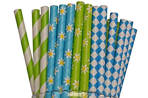 CS Collections Disposable Biodegradable Drinking Paper Straws-