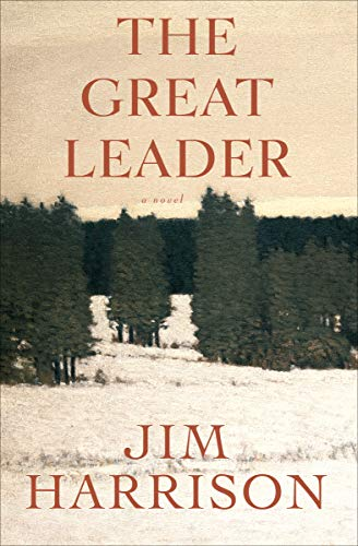 The Great Leader: A Novel