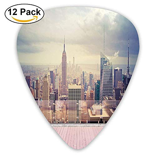 ndscape From Roof Apartment Balcony Photo Image Guitar Picks 12/Pack ()