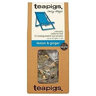 teapigs-zitronengras-und-ingwer-tee-15-tempel-1er-Pack-1-x-62-g